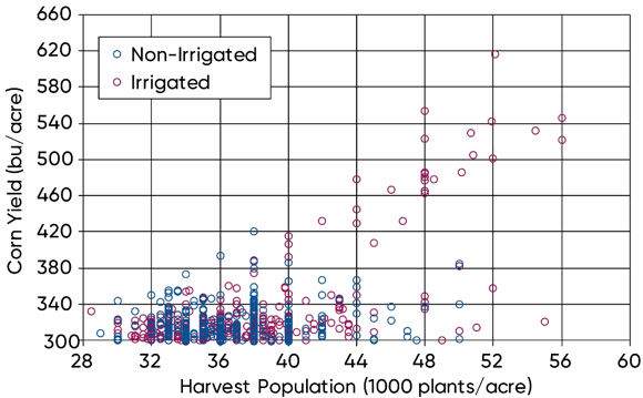 Scatter Plot - Harvest populations and corn yield of irrigated and non-irrigated NCGA National Corn Yield Contest entries exceeding 300 bu/acre, 2015-2019.