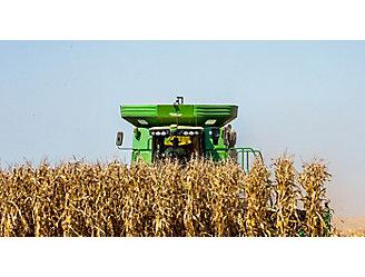 Corn harvest with combine on horizon