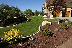 home with manicured side yard