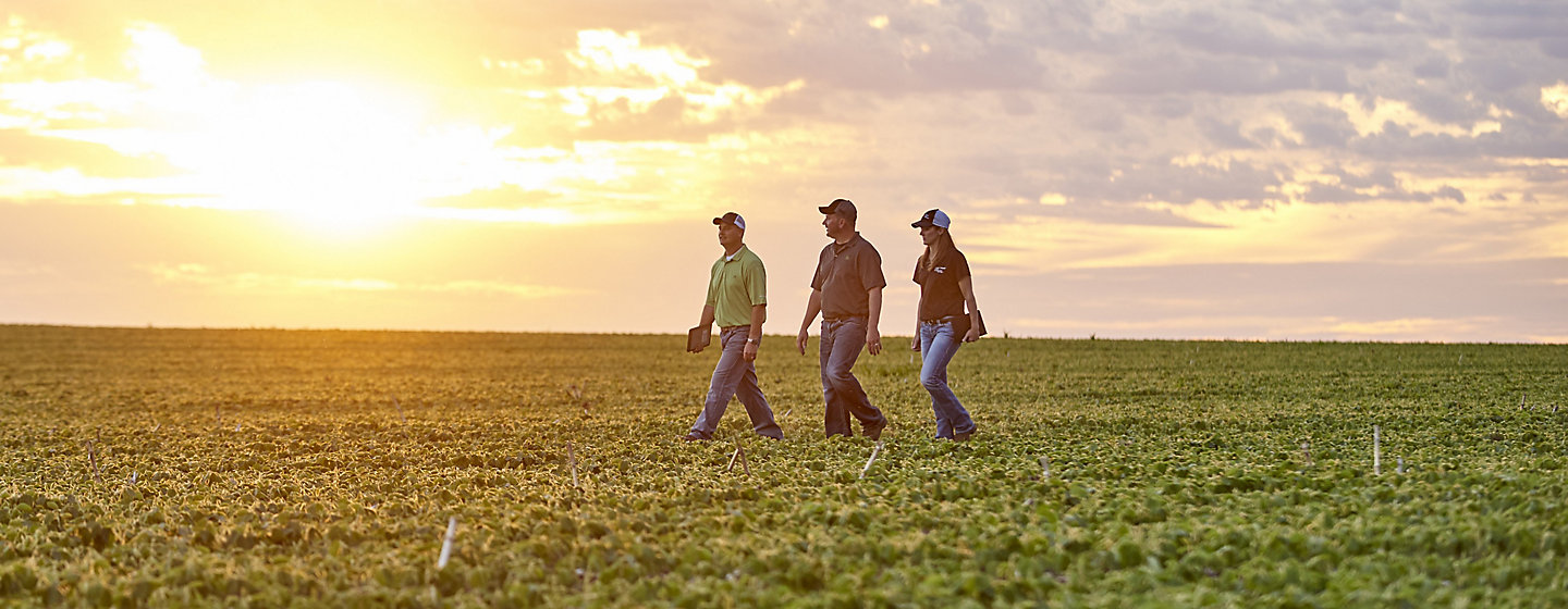 Enriching Lives - people walking in soybeans