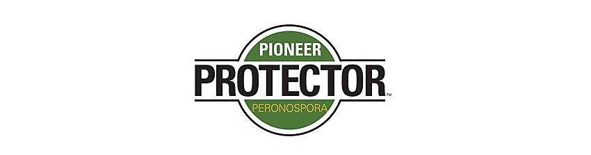 IMG_protector