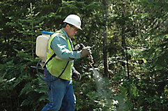 Man spraying brush with a backpack sprayer