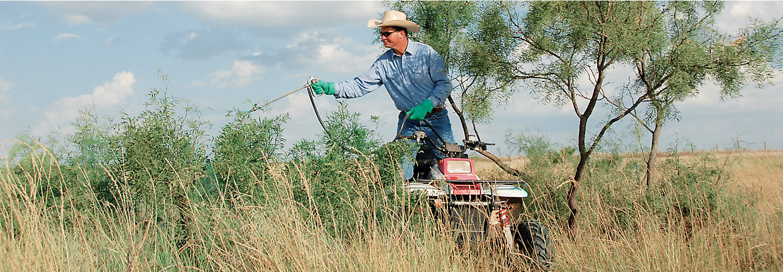 man spraying brush from an ATV
