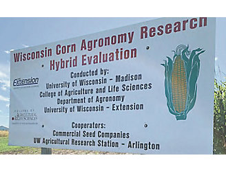 Corn test plot