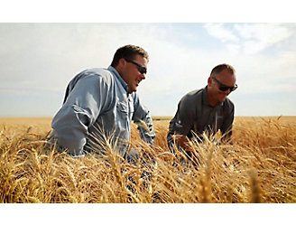 Ryan Thompson in wheat field