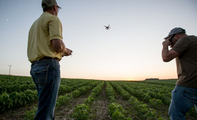 Photo - growers viewing drone flying over field.