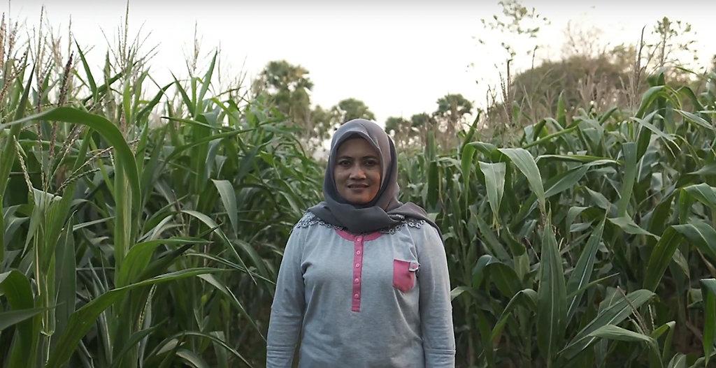 Indonésia: Projeto Ausaid-Prisma