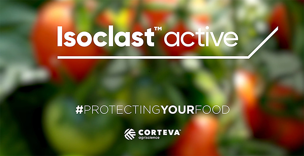 Text thumbnail for Isoclast™ Active ingredient video. Hashtag protecting your food. The video outlines the benefits of sulfoxaflor and how it differs to other insecticides.