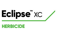 LG-Eclipse-XC-herb-logo