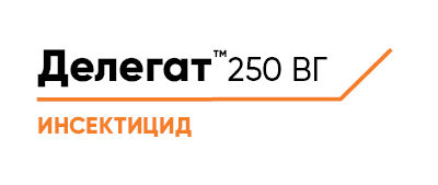 Делегат™ 250 ВГ