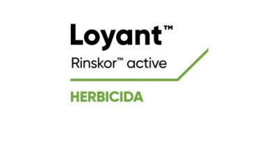 Logo de Loyant