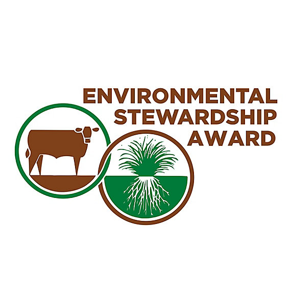 Environmental Stewardship Award logo