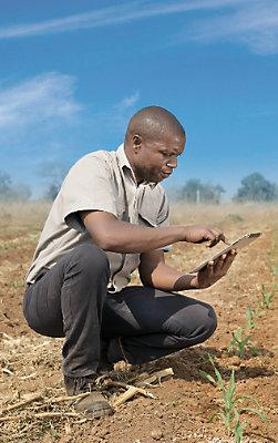 Local Agronomists