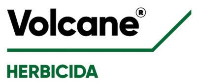 Logo_Volcane