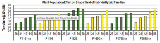 Plant Population Effect