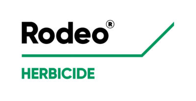 Rodeo product logo