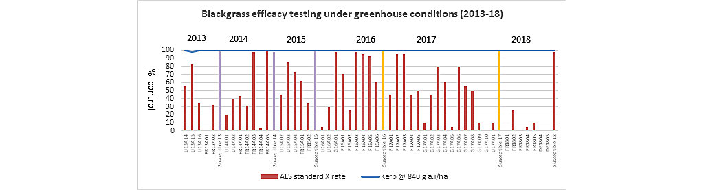 Blackgrass efficacy testing under greenhouse conditions