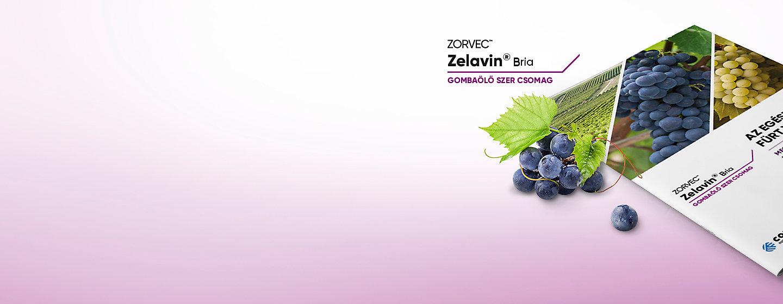 Zelavin_Bria
