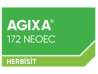 Agixa