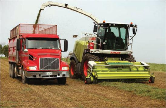 Forage harvest