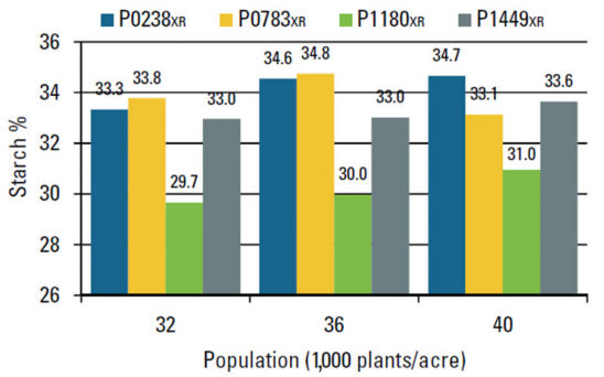 Chart: Starch (%) response to plant population.