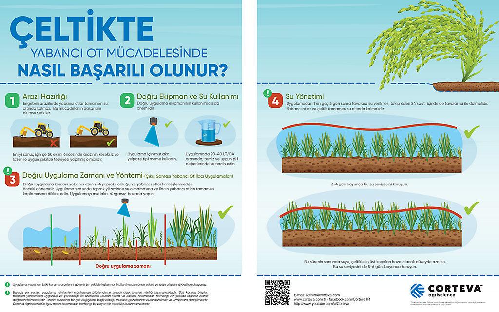 celtik-infografik
