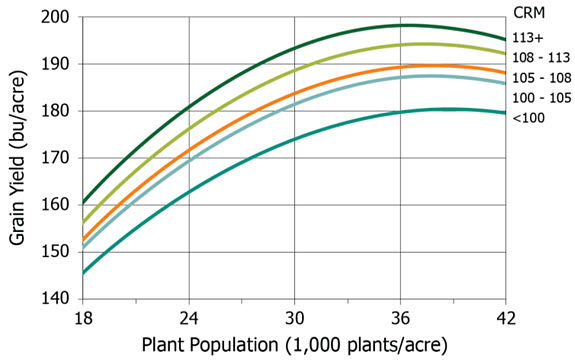 Yield response to plant population for corn hybrids from 5 maturity ranges.