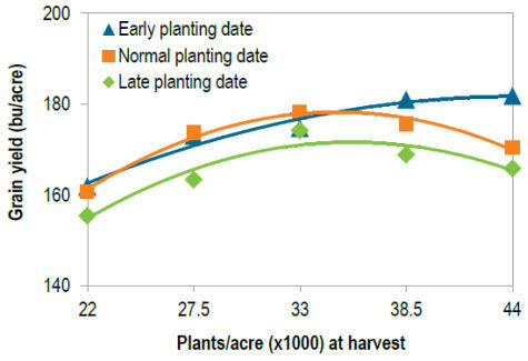Corn grain yield in 2014 and 2015 at Crookston, MN as affected by planting date and plant population.