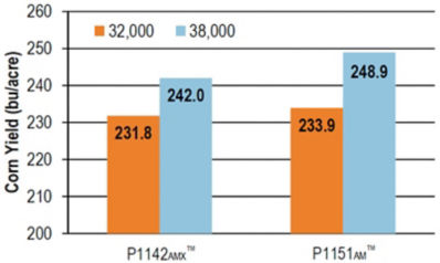 Chart: Yield of P1142AMX™ and P1151AM™