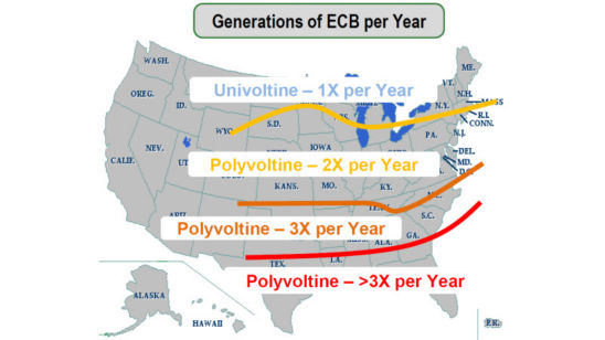U.S. Map - generations of European Corn Borer per year.