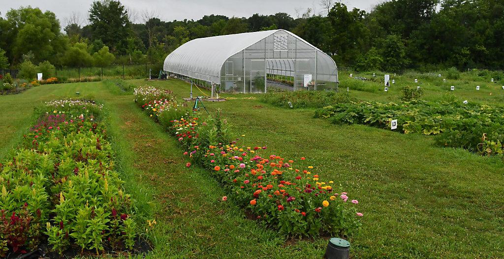 Employee Gardens