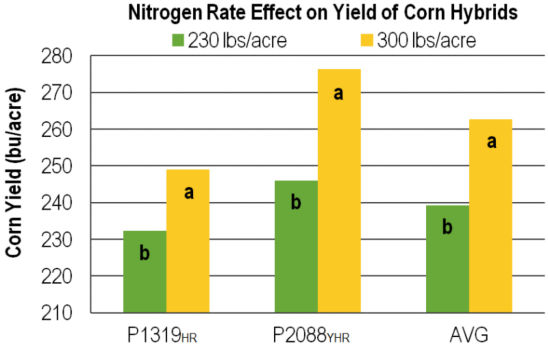 Nitrogen Rate Effect on Yield of Corn Hybrids