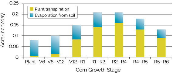 Chart showing evapotranspiration of water (acre-inch basis) to support corn growth in Iowa during different growth stages.