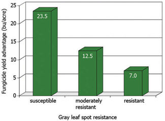 Chart: Average yield increase with foliar fungicide application over three years in hybrids susceptible, moderately resistant, and resistant to gray leaf spot.
