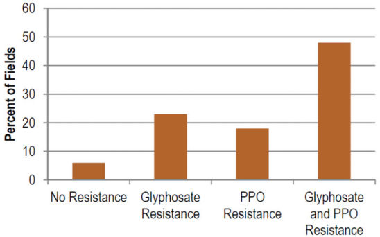 Percentage of Illinois fields with no resistance, resistance toglyphosate, resistance to PPO-inhibiting herbicides, or resistanceto both herbicides.