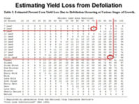 Estimating Yield Loss from Defoliation