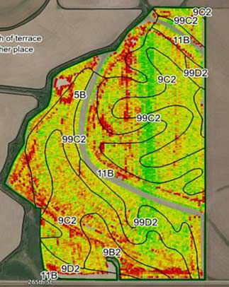Harvest map of corn field showing increased yield levels in the fungicide-treated strip compared to the untreated areas of the field.