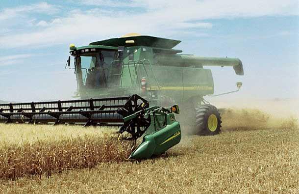 Photo of wheat harvest.