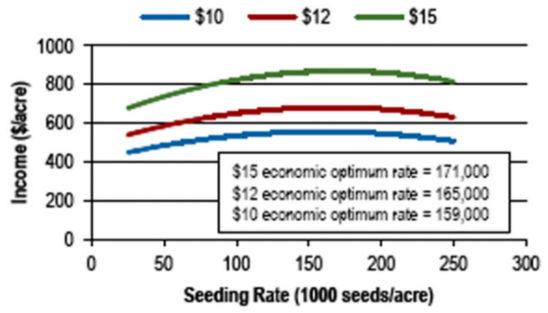 optimum economic seeding rates at soybean market prices