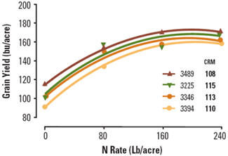 Grain yield response of four corn hybrids to N application rate.