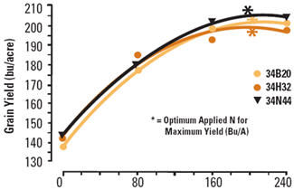 Grain yield response of three corn hybrids to N application rate.