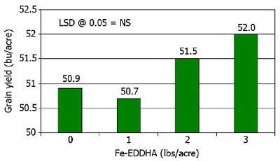 Effect of Fe-EDDHA on soybean grain yield.