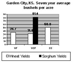 Comparison wheat/sorghum yields - Garden City, KS