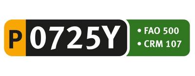Logo P0725Y