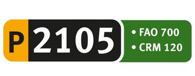 Logo P2105