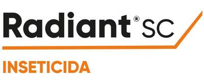 Logotipo Radiant SC
