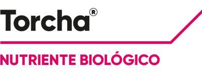 Logotipo Torcha