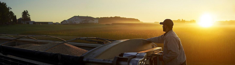 Man in field at sunrise