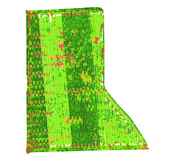 Yield map with two combines harvesting in the same field with different yield calibrations.