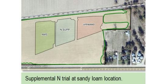 Supplemental N trial at sandy loam location
